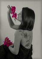 орхидеи; Няма коментари
