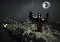 Black Wings, Full Moon...; No comments