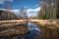 весенний пейзаж; Коментари:1