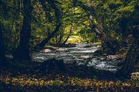 Спокойствие край реката; comments:3