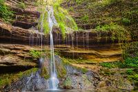 Златно водопадче; comments:4