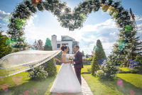 weddingday; comments:1
