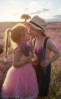 Love lavender; comments:3