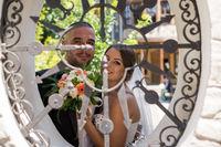 Радост след сватба; Коментари:1