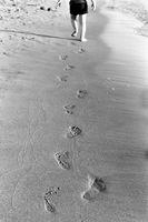 Стъпки в пясъка; Коментари:1