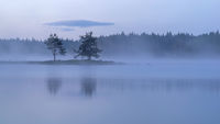 Мъгливо-синьо; comments:16