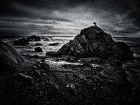 Господарят на скалистия бряг...; comments:18