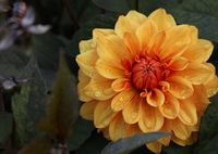 no name ( ID=2372317 ); comments:3