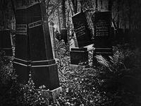 сближавания и раздели след смъртта; Коментари:3