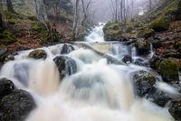 По течението на Боянската река.; comments:4