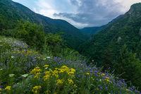 Към Бистришкия водопад; comments:5