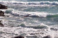 Над вълните; comments:6