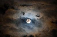The Moon; Коментари:4