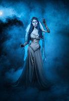 Corpse Bride; comments:4