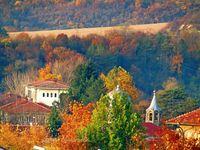 Есенно великолепие; comments:6