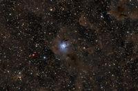 NGC 7023 Мъглявината Ирис; comments:6