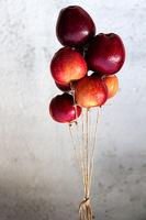 октомврийски балони; comments:43