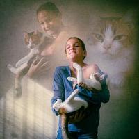 Котешки портрет; comments:4