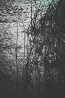 Вода; comments:1