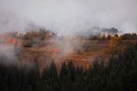 Мъгливи Родопи; comments:5