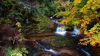 Каньонът на водопадите; comments:7