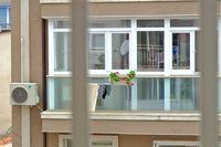 Природа на амнайстия етаж !; No comments