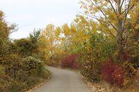 Есента; comments:2