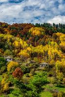 Есен в Родопите; comments:4