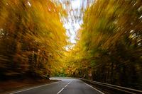 Есента в скорост; comments:2