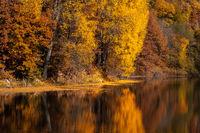 Autumn vibes; comments:1