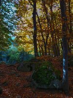 Есенно; comments:3