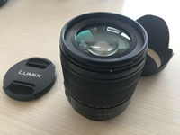 Panasonic Lumix G Vario 14-140mm f/3.5-5.6 ASPH POWER O.I.S.