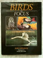 Birds in Focus
