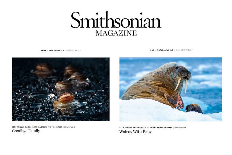 Двама български фотографи сред финалистите в Smithsonian magazine photocontest