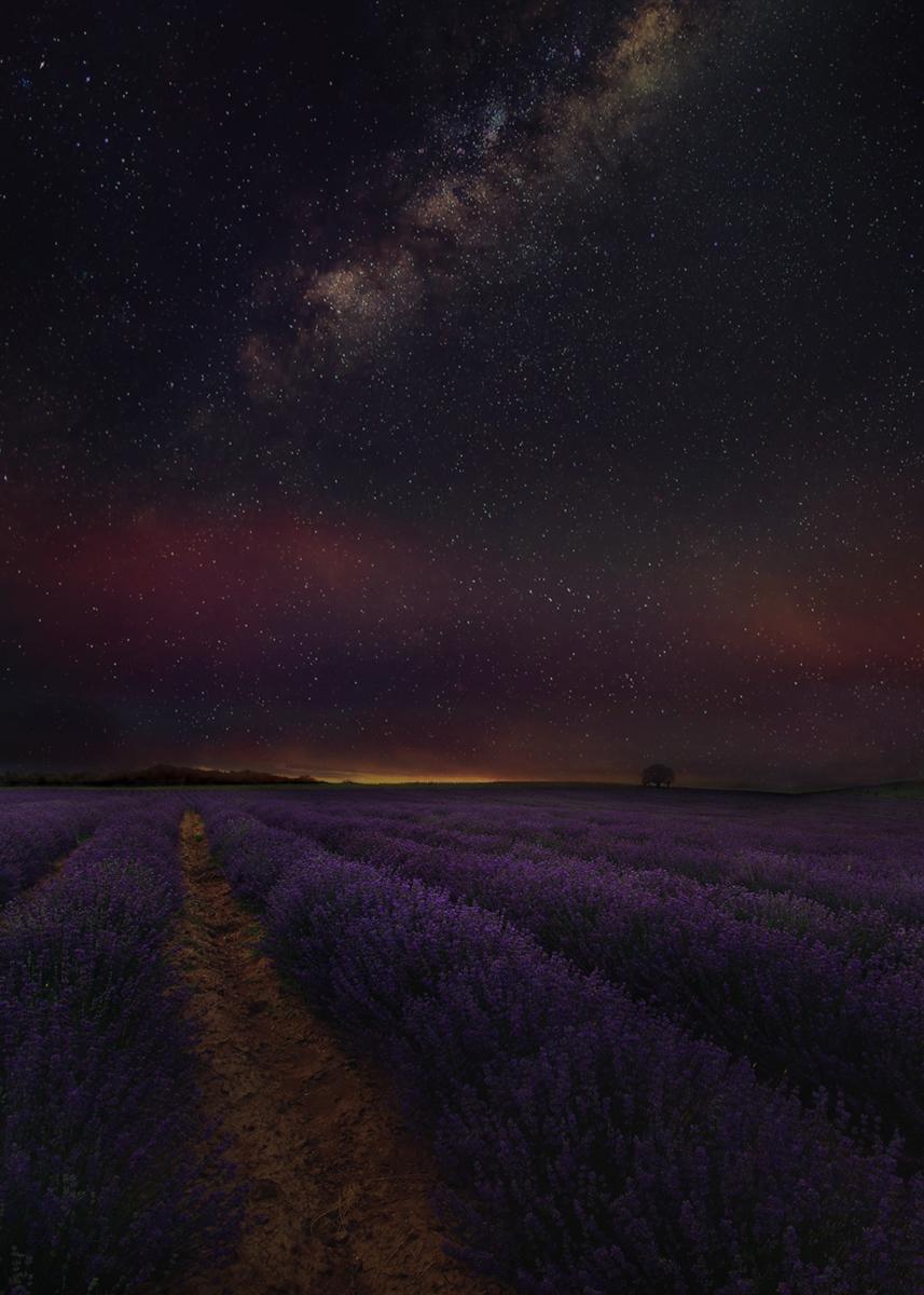 Лилави нощи от Александър Иванов - masteral