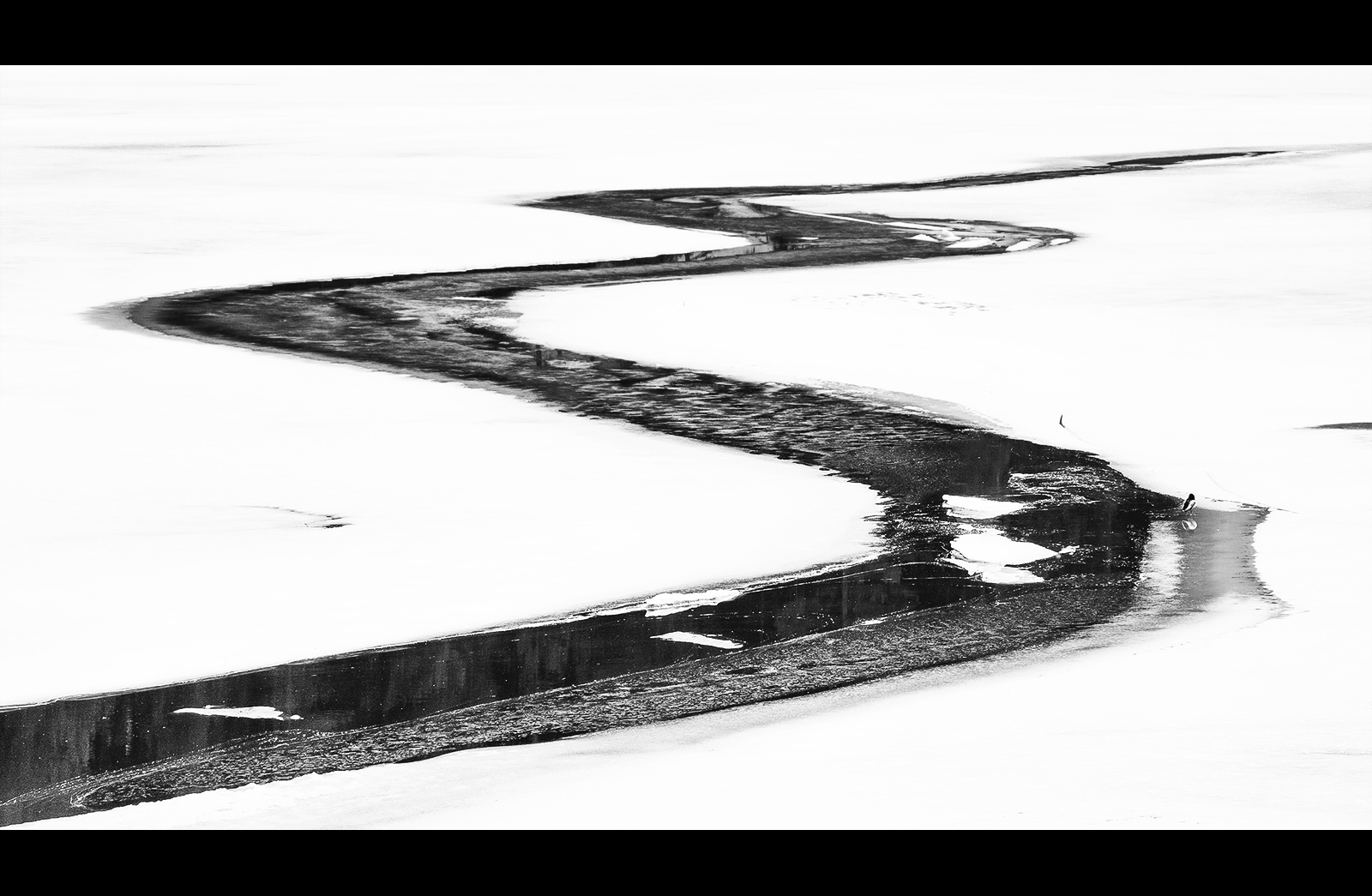 S от Александър Иванов - masteral