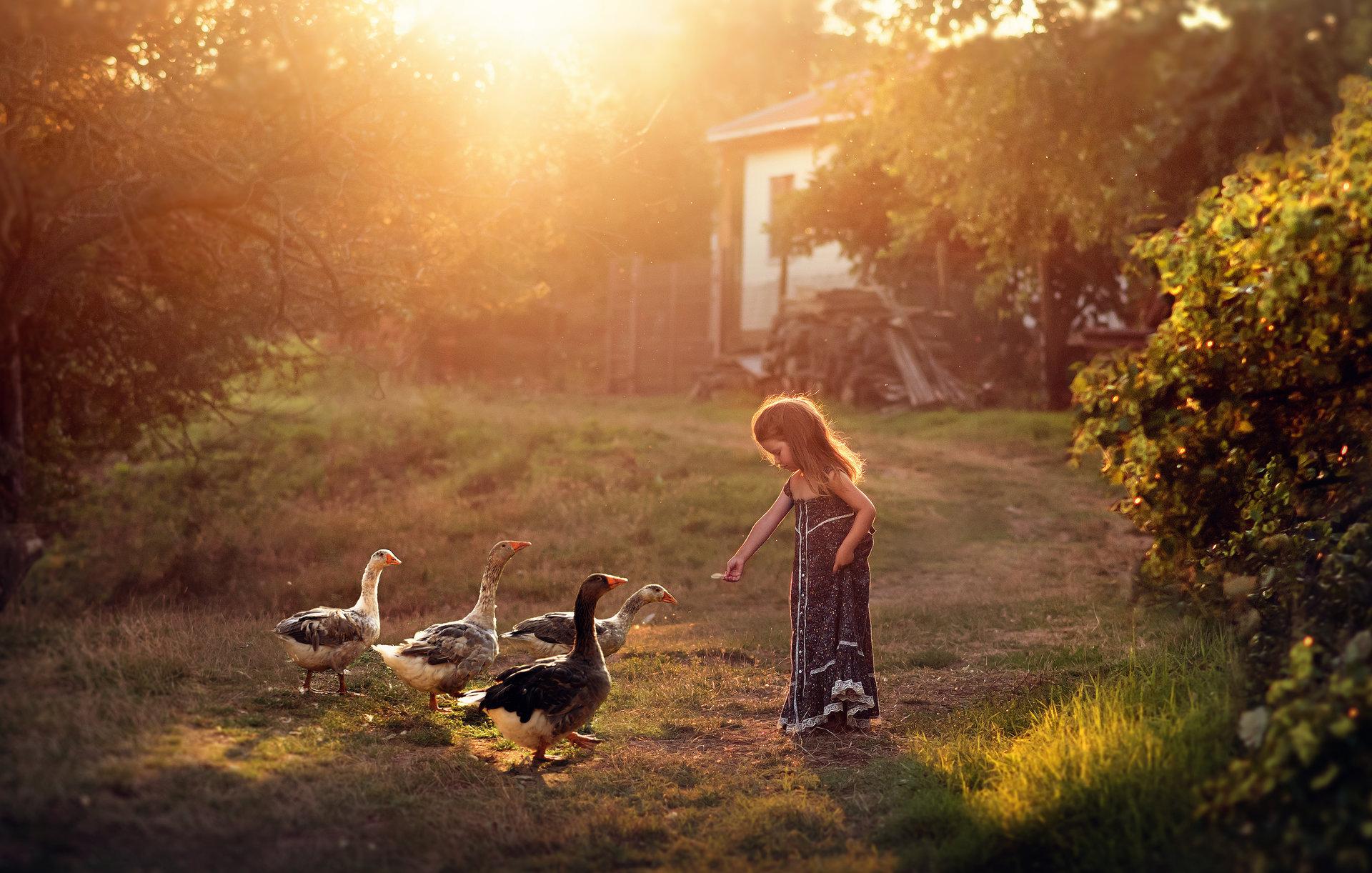 Бори и гъските :) от Irina Stoilova - Renatka