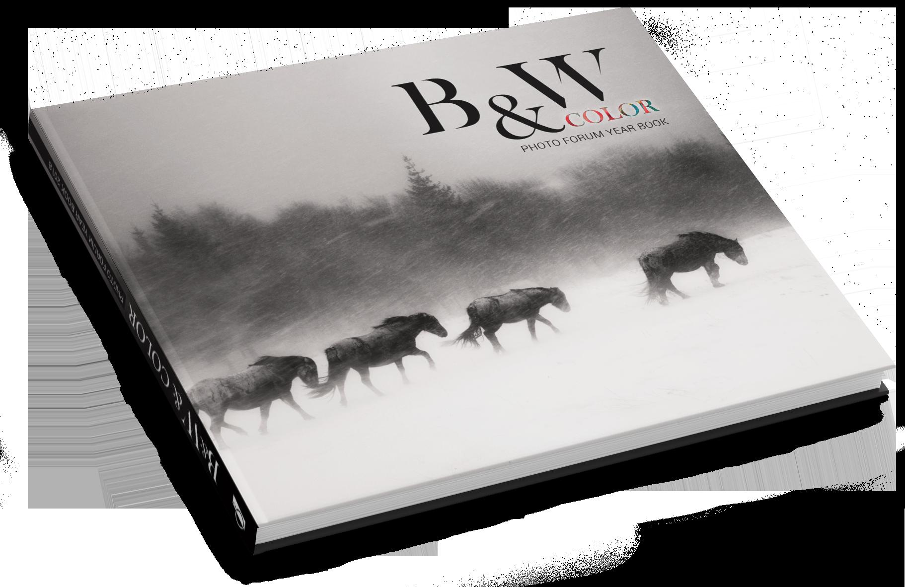 "Печатен годишен албум на Фото Форум ""Black&White & Color"""