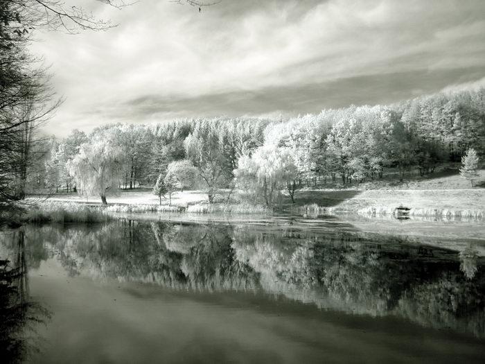 Отражение в IR   Author Milen Dimitrov - terminator   PHOTO FORUM