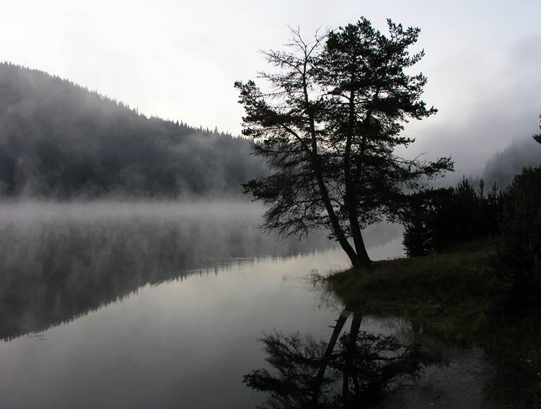 Утрините тук са тихи | Author aleksandar milinich - crnamaca | PHOTO FORUM