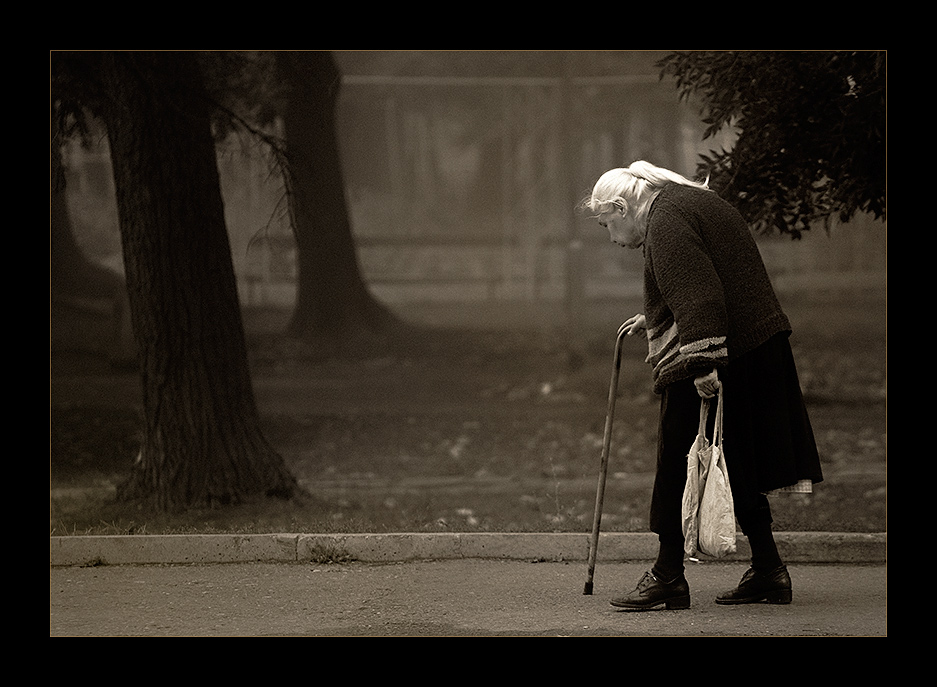 ....за хляб | Author Plamen Andreev - pla | PHOTO FORUM