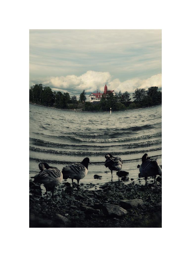 Усмихнатото Балтийско море   Author B  - borgot   PHOTO FORUM