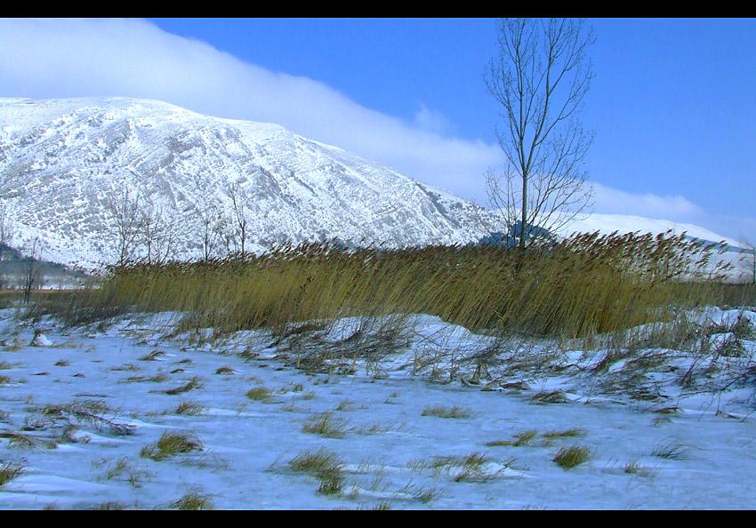 Драгоманските скали през зимата   Author andreyhr   PHOTO FORUM
