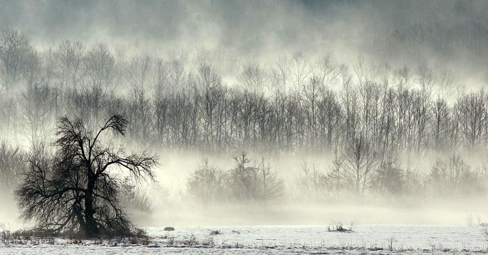 Време за приказки | Author tihomir penov - shadow... | PHOTO FORUM
