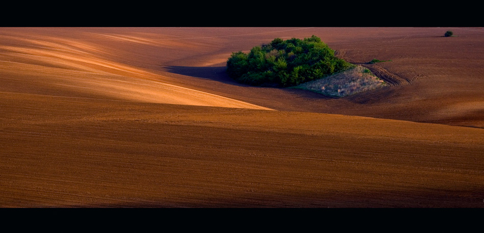 Photo in Nature | Author Ivan Hristov - Ihif | PHOTO FORUM