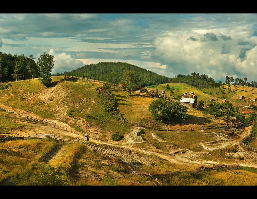 Мечо корито | Author Aleksandar Ivanov - masteral | PHOTO FORUM
