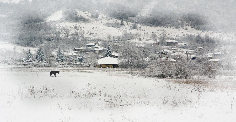 Зима | Author Jordanka Welichkova - anchi | PHOTO FORUM