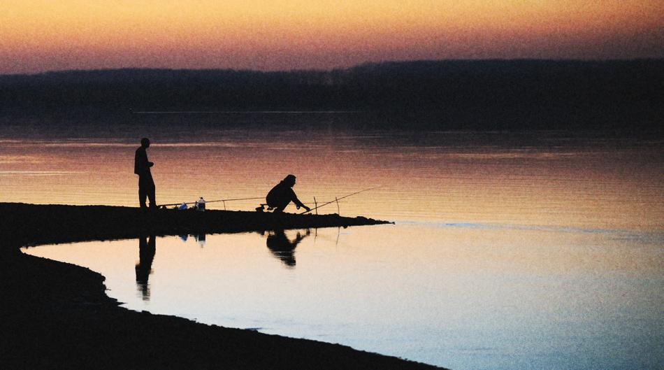 ... и един Дунавски поздрав :) | Author Mladen Parvanov - demiman | PHOTO FORUM