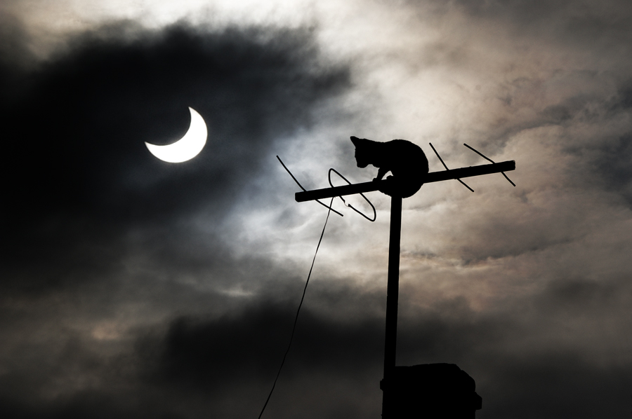 Solar Eclipse   -   Ами... нищо ново под слънцето, особено днес :))
