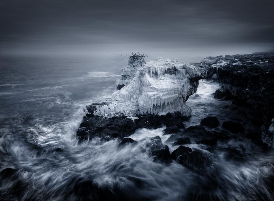 Iced Age bw | Author Албена Маркова - Tais | PHOTO FORUM